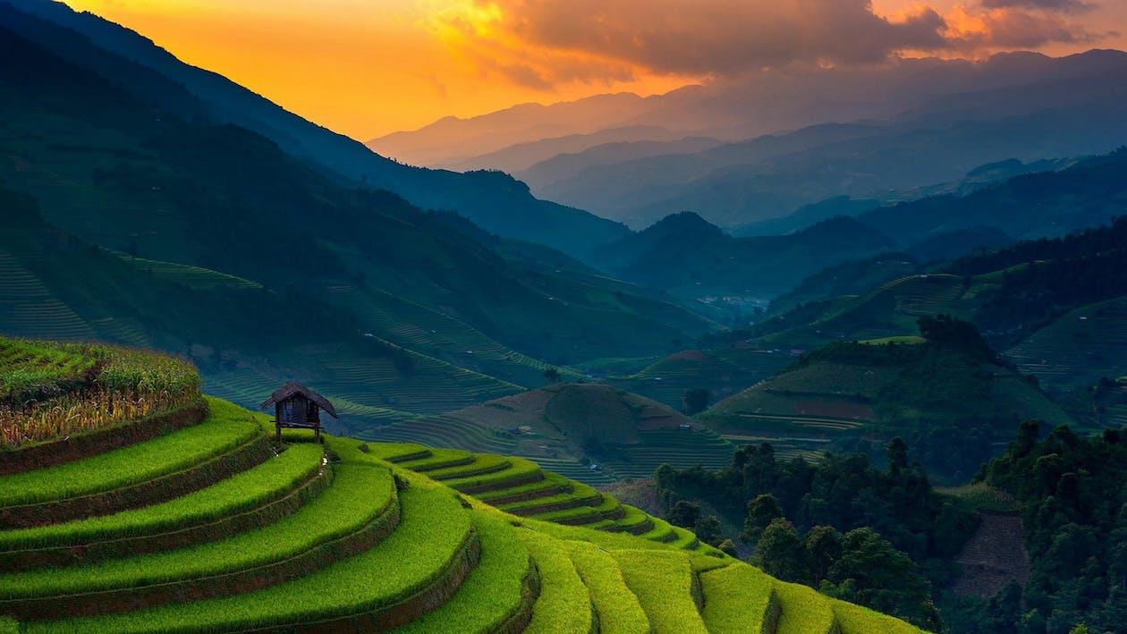 Banaue Rice Terraces, Philippines · Free Stock Photo