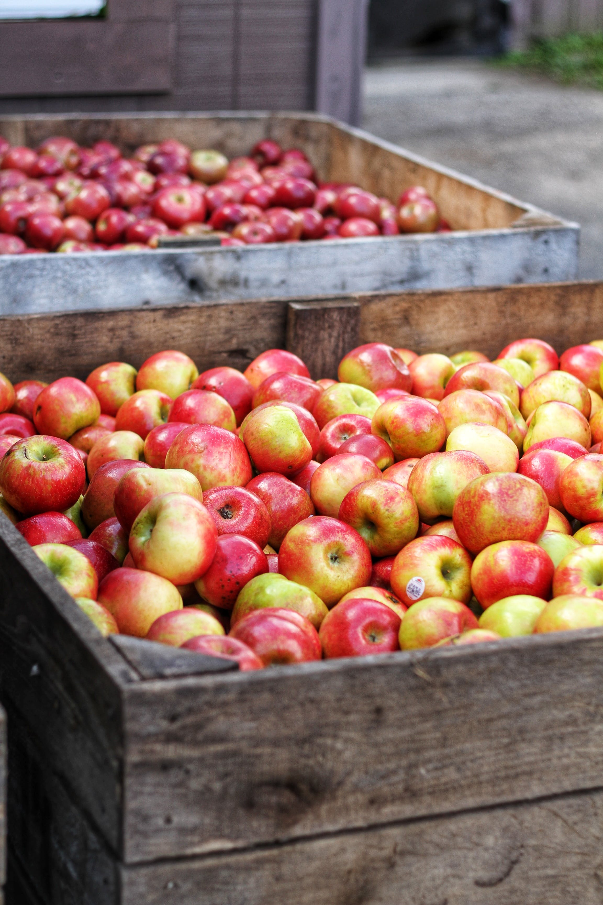 Red Apple Lot in Wooden Crates
