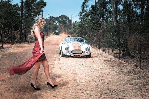 Gratis arkivbilde med ac cobra, bil, dagslys, forblåst