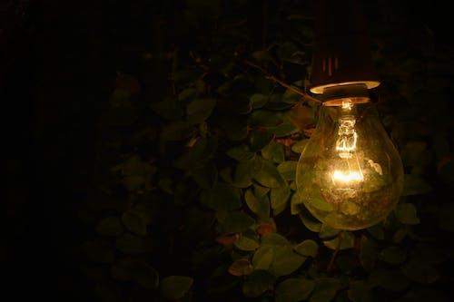 Darmowe zdjęcie z galerii z ciemny, energia, jasny, kolor