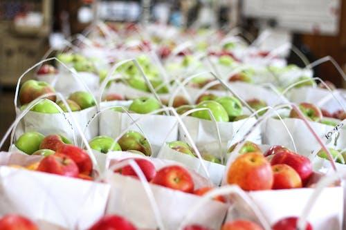 健康, 有養分的, 果园, 果园苹果 的 免费素材照片