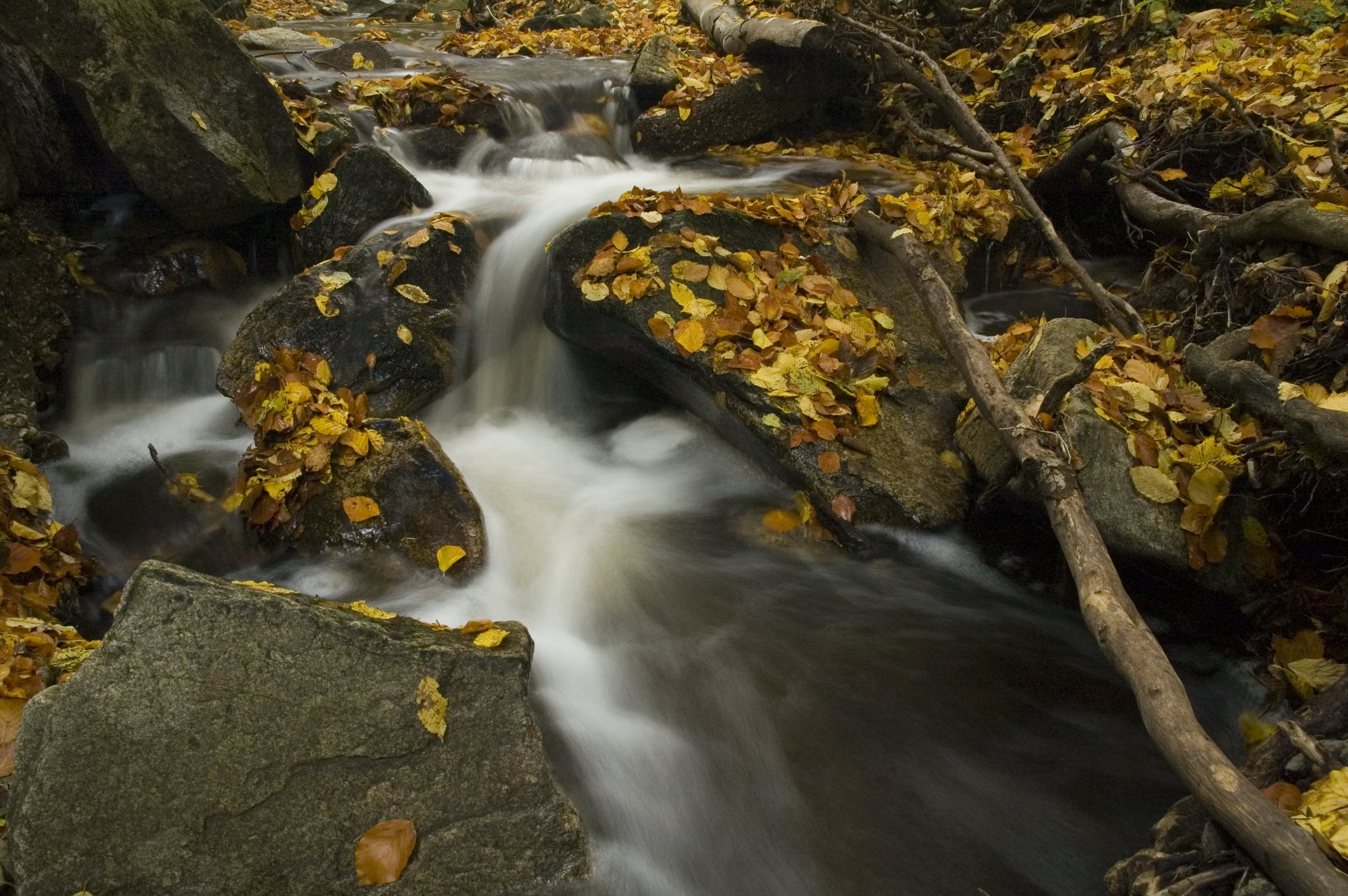 Time-lapse Photography of Flowing Water