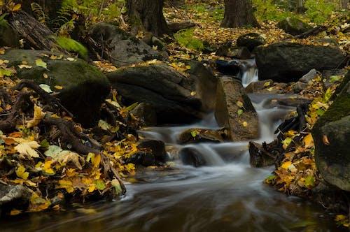 Бесплатное стоковое фото с HD-обои, валун, вода, водопады