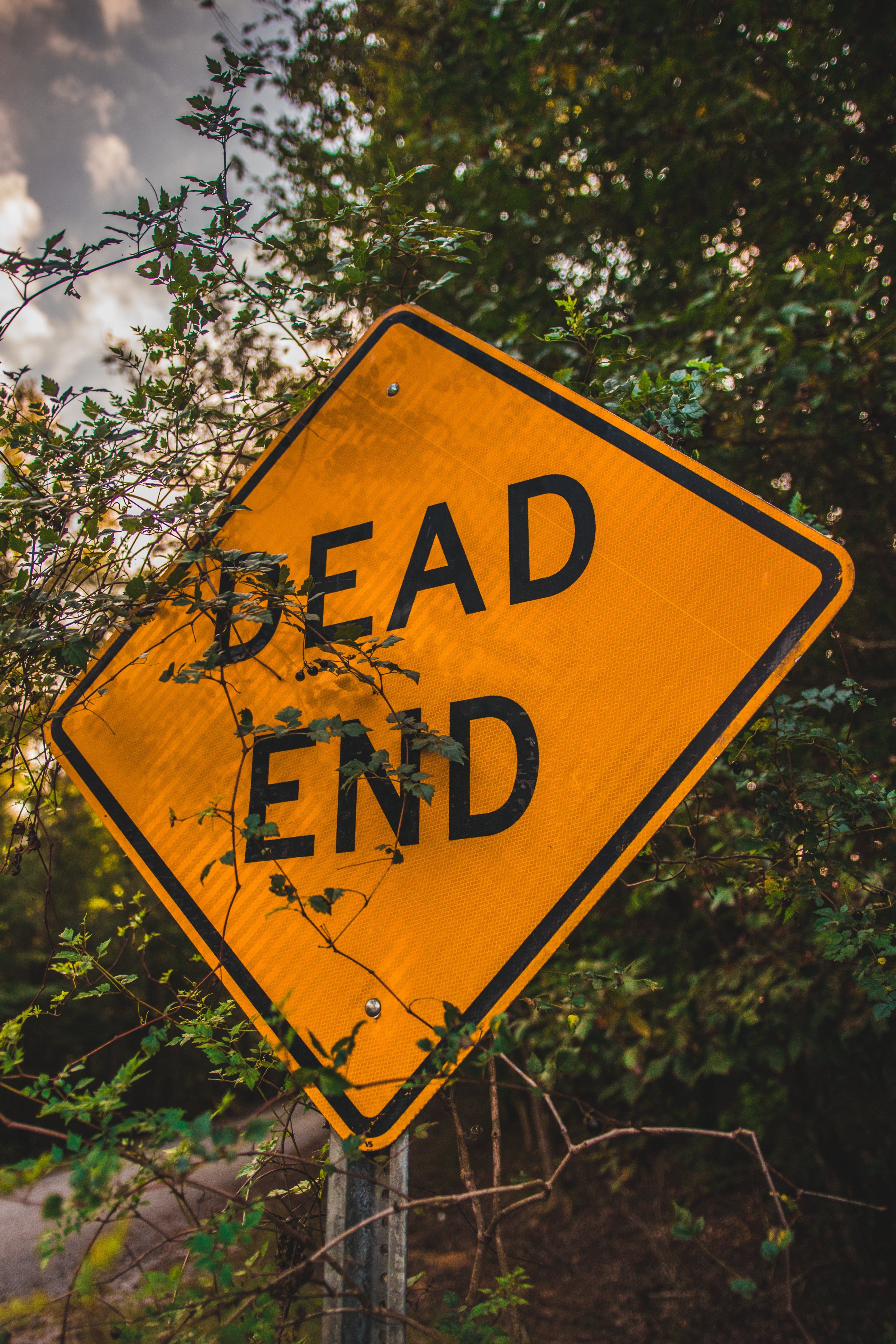 Free stock photo of Cool Signs, dead, dead end, end