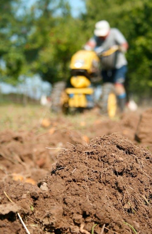 Photos gratuites de agriculteur, argile, jardin, jardiner