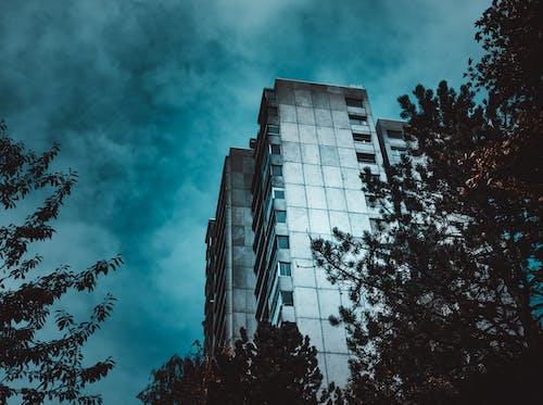 Δωρεάν στοκ φωτογραφιών με αρχιτεκτονική, αρχιτεκτονικό σχέδιο, γυάλινα παράθυρα, δέντρα