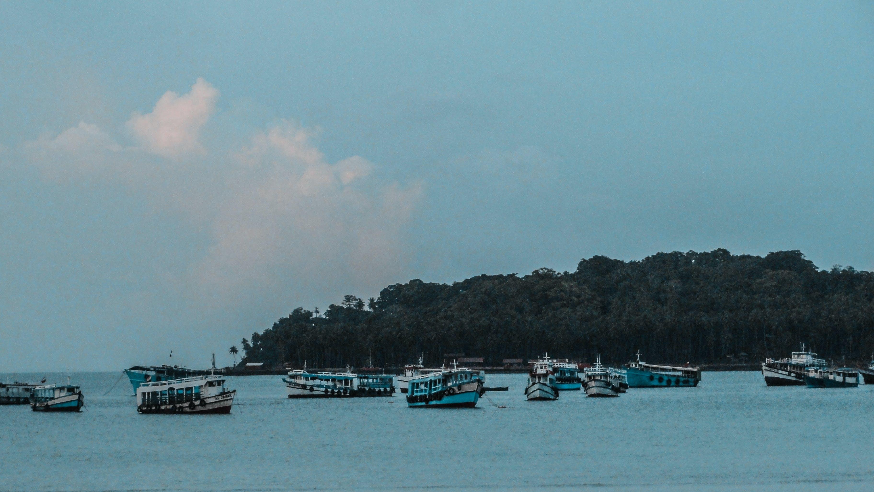 Teal Boats Near Island