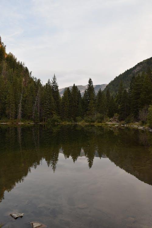 Gratis lagerfoto af bjerg, dagslys, eventyr, farve
