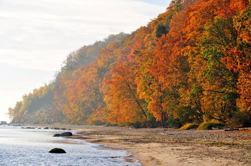 Gratis lagerfoto af årstidsbestemt, baltic, hav, sæson