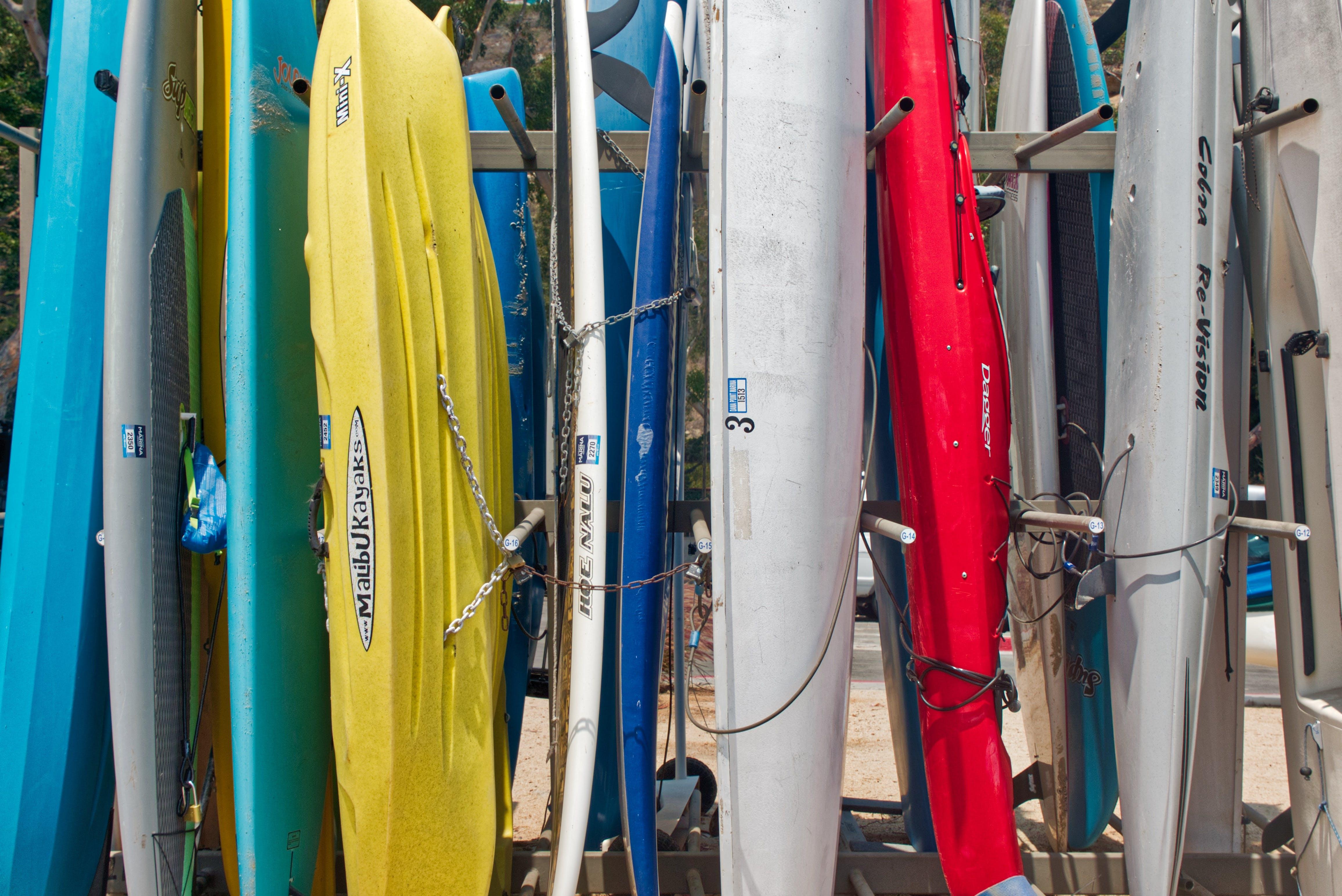 Free stock photo of boating, Dana Point, harbor, kayaking