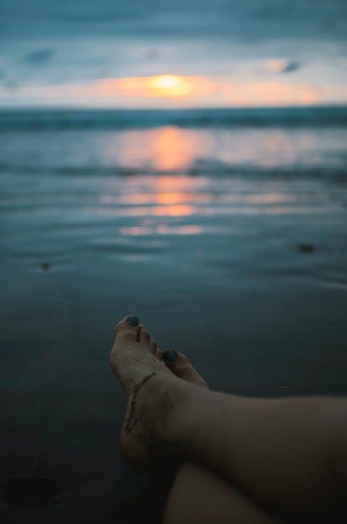 Ingyenes stockfotó Aranyló nap, strand témában