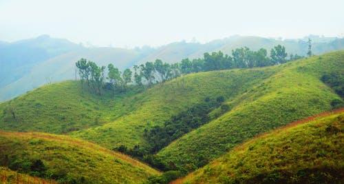 Kostnadsfri bild av berg, grönt gräs, inspiration, kall naturlig