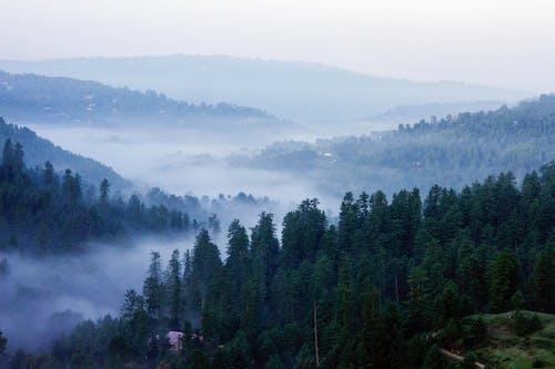 Gratis arkivbilde med dal, fjell, natue, naturlig skjønnhet
