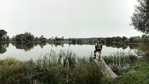 天性, 漁夫, 釣魚 的 免费素材照片