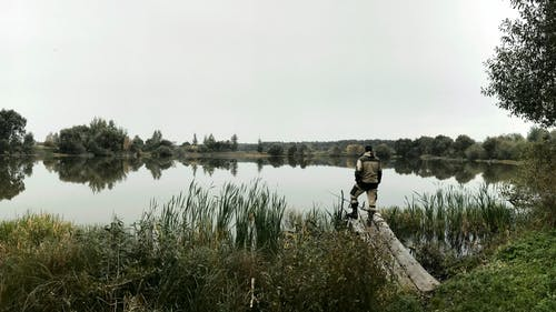 Kostnadsfri bild av fiskare, fiske, natur