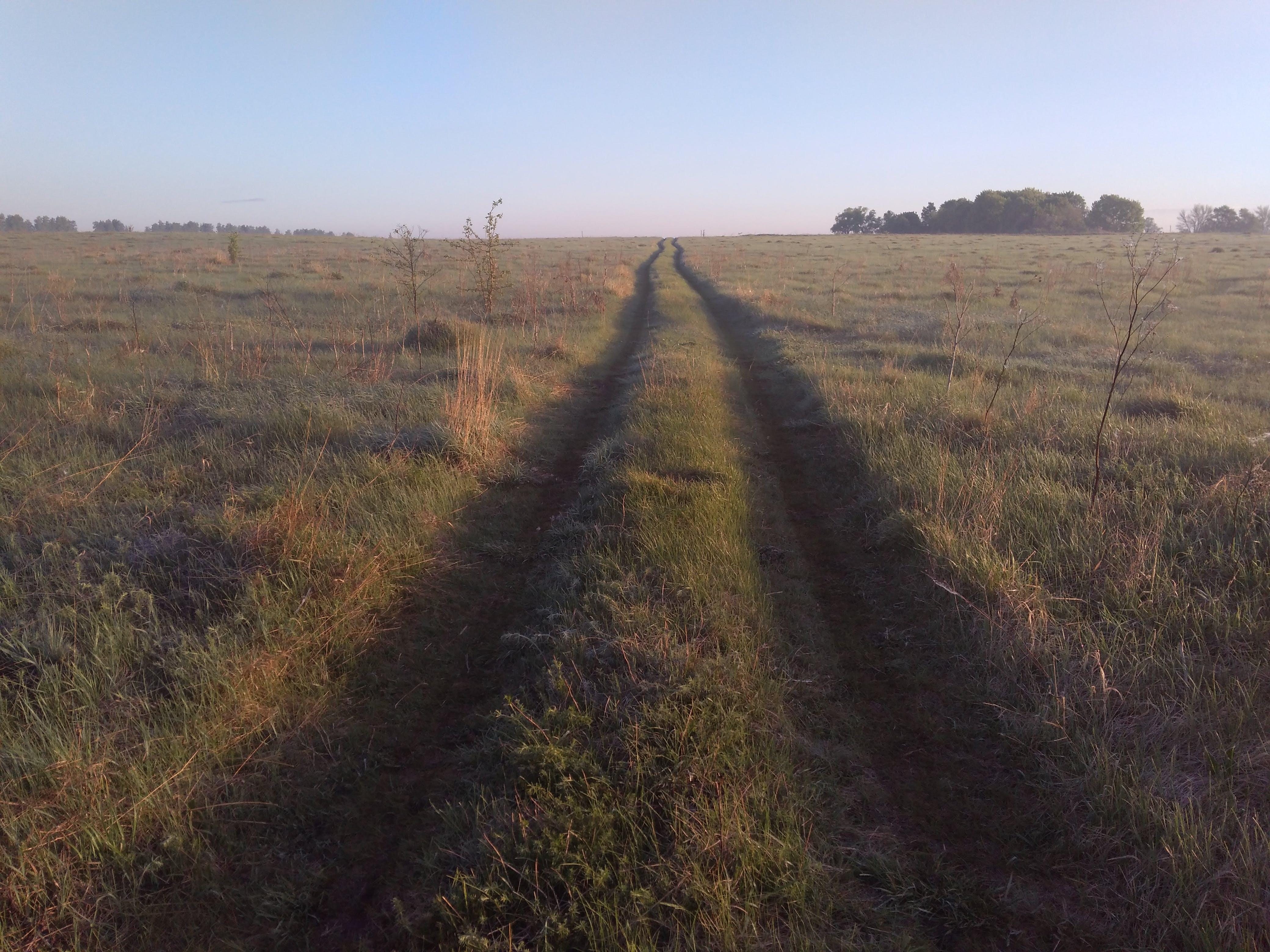 Foto stok gratis jalan, matahari terbit