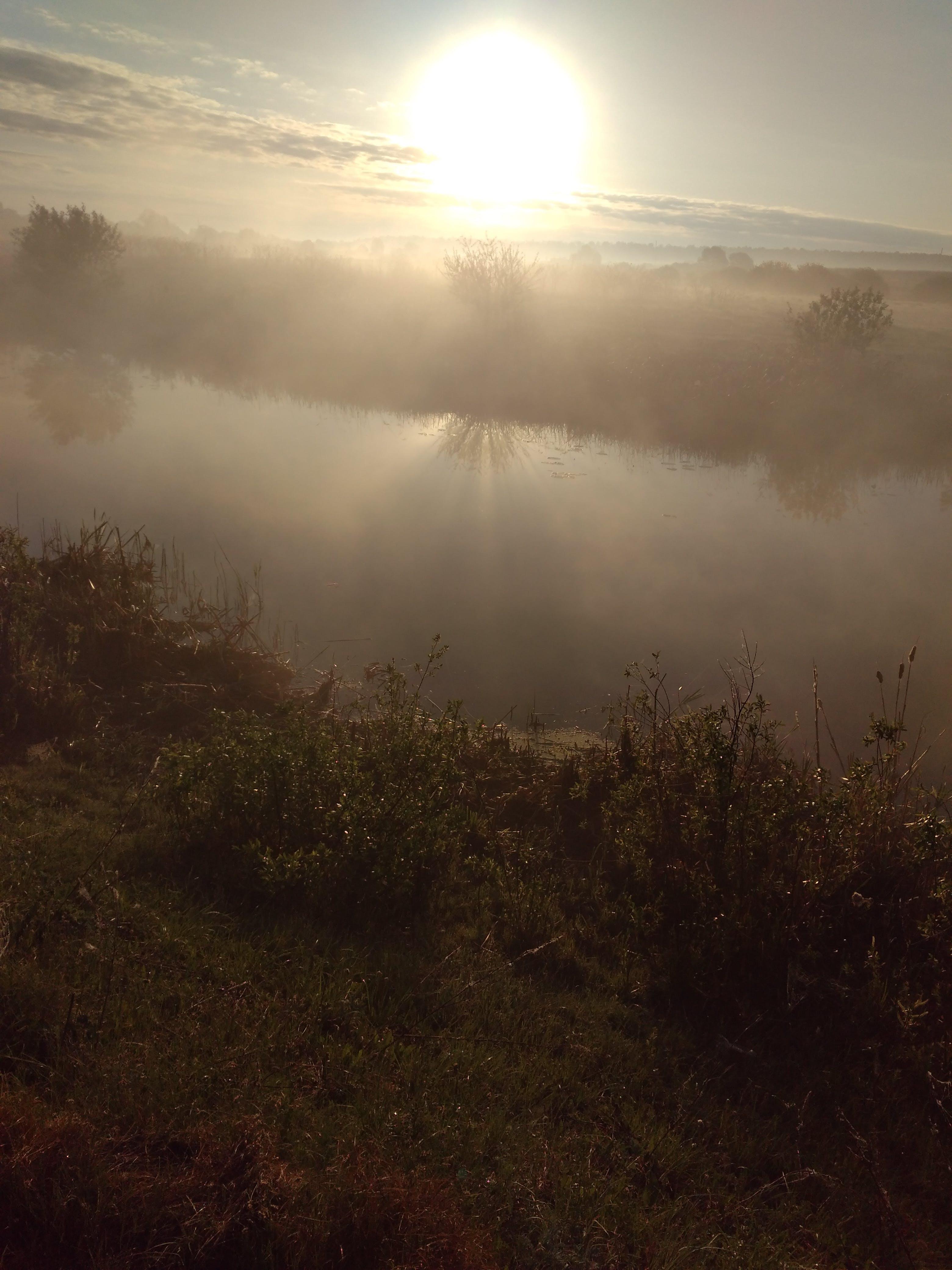 Foto stok gratis alam, kabut, matahari terbit