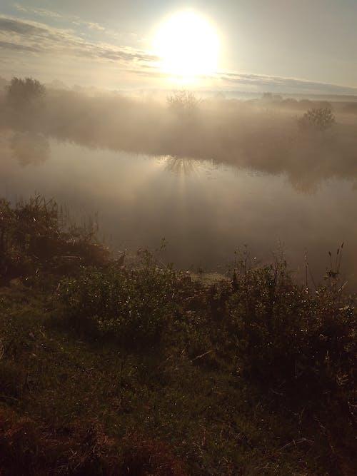 Ilmainen kuvapankkikuva tunnisteilla auringonnousu, luonto, usva