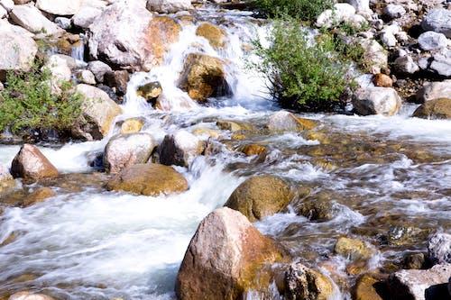 Free stock photo of stream, waterfalls