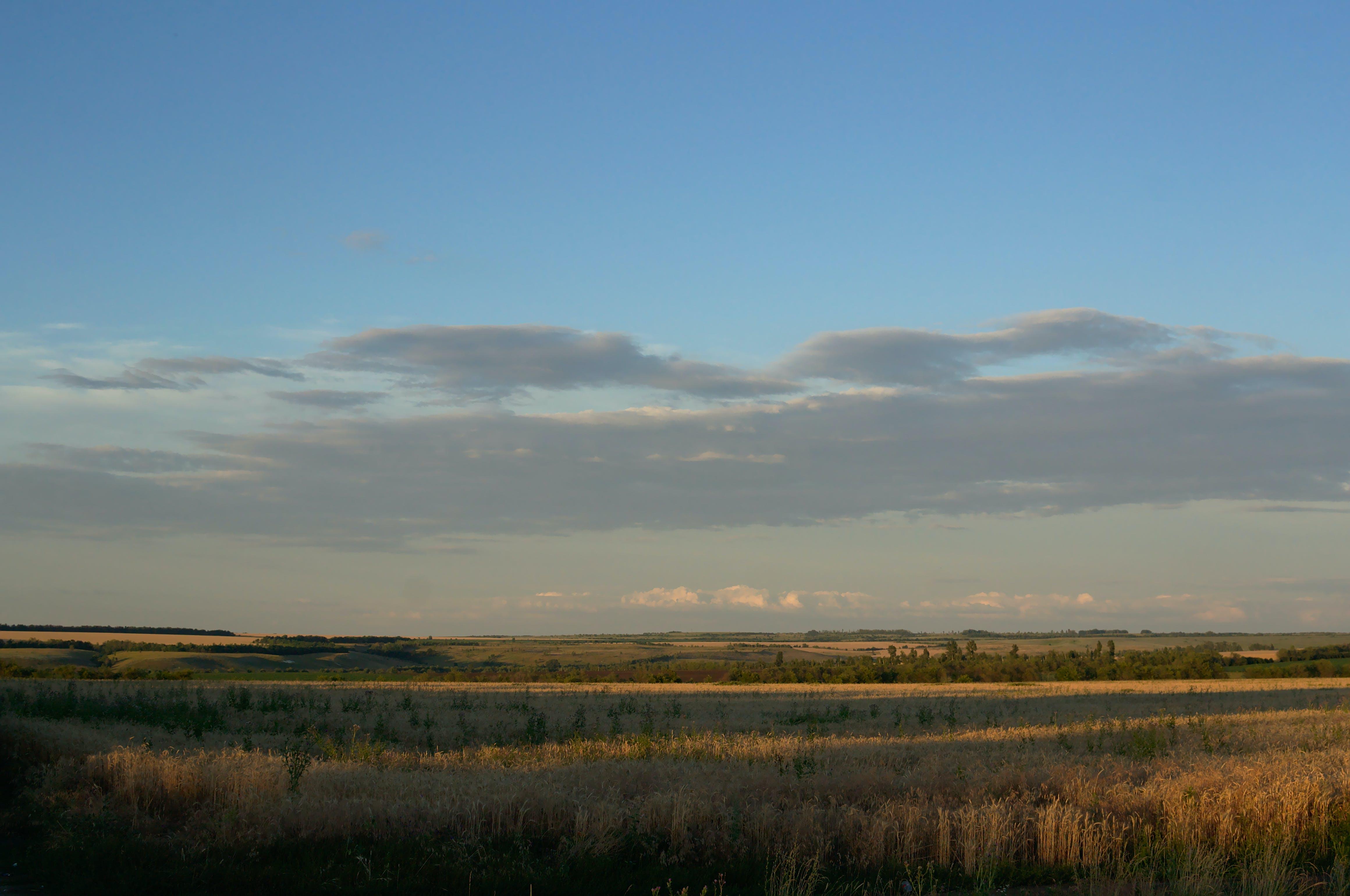 Foto stok gratis bidang, matahari terbenam