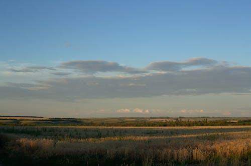 Ilmainen kuvapankkikuva tunnisteilla auringonlasku, kenttä