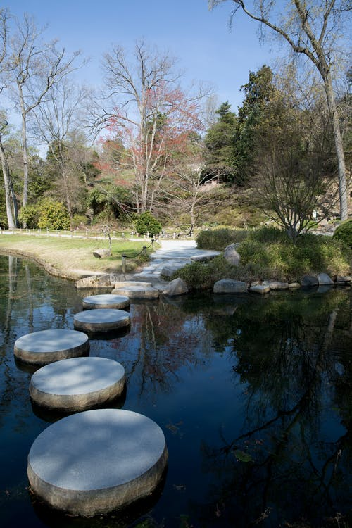 Free stock photo of garden, path, pond, reflection