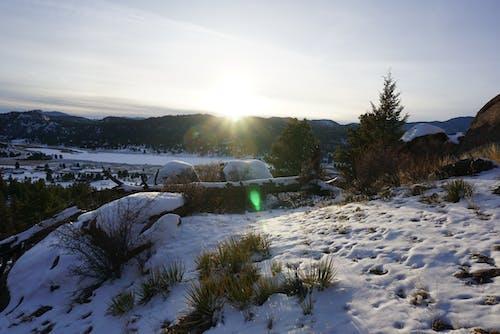 ağaçlar, akşam, buz, çim içeren Ücretsiz stok fotoğraf
