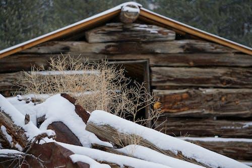Gratis stockfoto met achtergelaten, bevroren, blokhut, boerderij