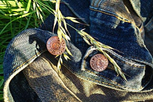 Free stock photo of button, denim, design, fashion