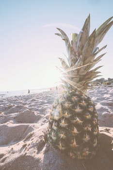 Pineapple in Gray Sand during Daytime