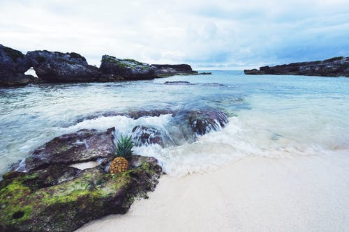Безкоштовне стокове фото на тему «ананас, берег моря, вода, камені»