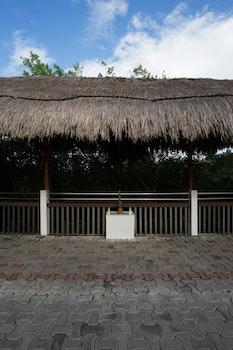 Free stock photo of path, travel, pineapple, hut