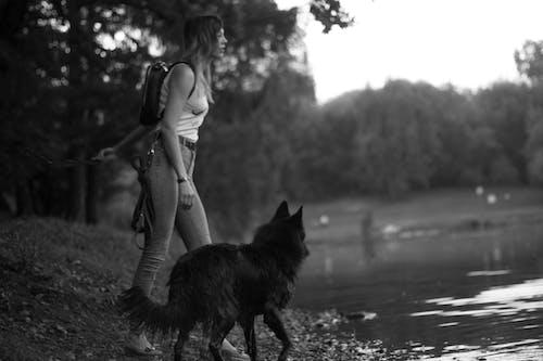Kostenloses Stock Foto zu b / w, frau, hund, mädchen