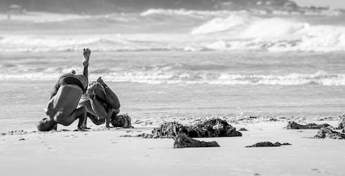 Foto stok gratis #afro, #angola, #brasil, #capoeira