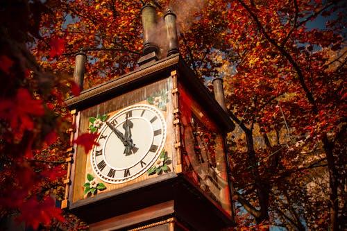 Imagine de stoc gratuită din Canada, ceas de abur, frunze roșii, gastown