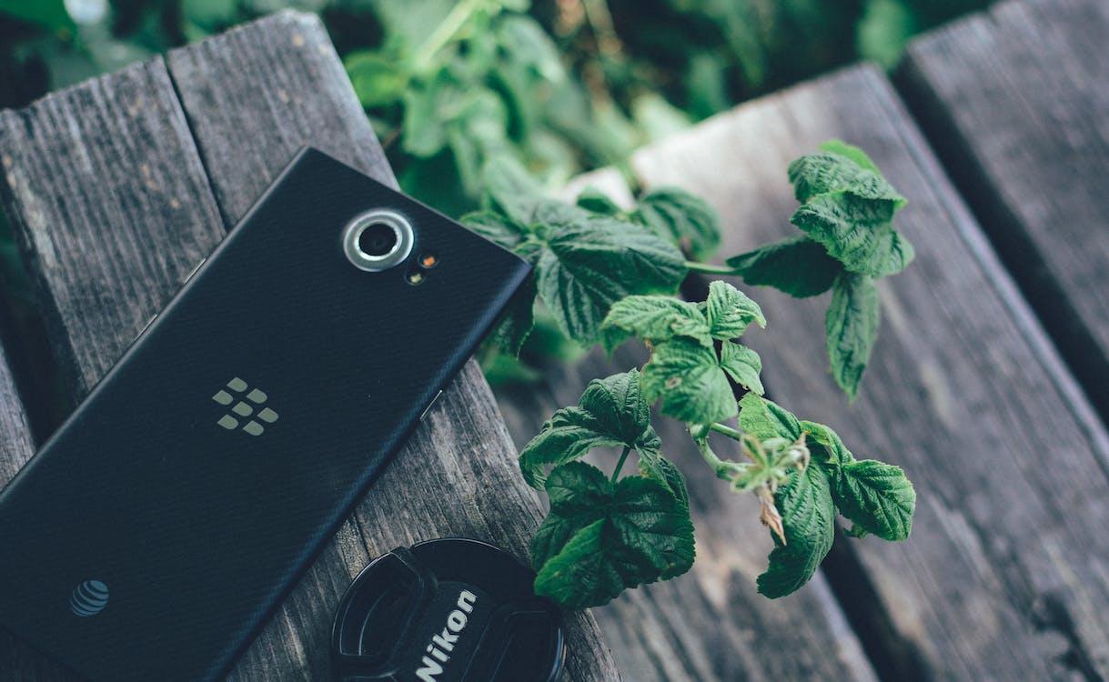 blackberry, nikon, smartphone