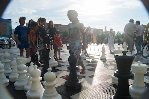 太陽, 有趣, 棋 的 免費圖庫相片