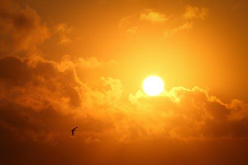 Foto profissional grátis de alvorecer, amanhecer, aurora, brilho do sol