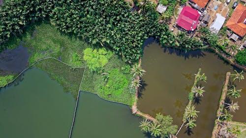 Foto profissional grátis de aerofotografia, água, aldeia, ao ar livre
