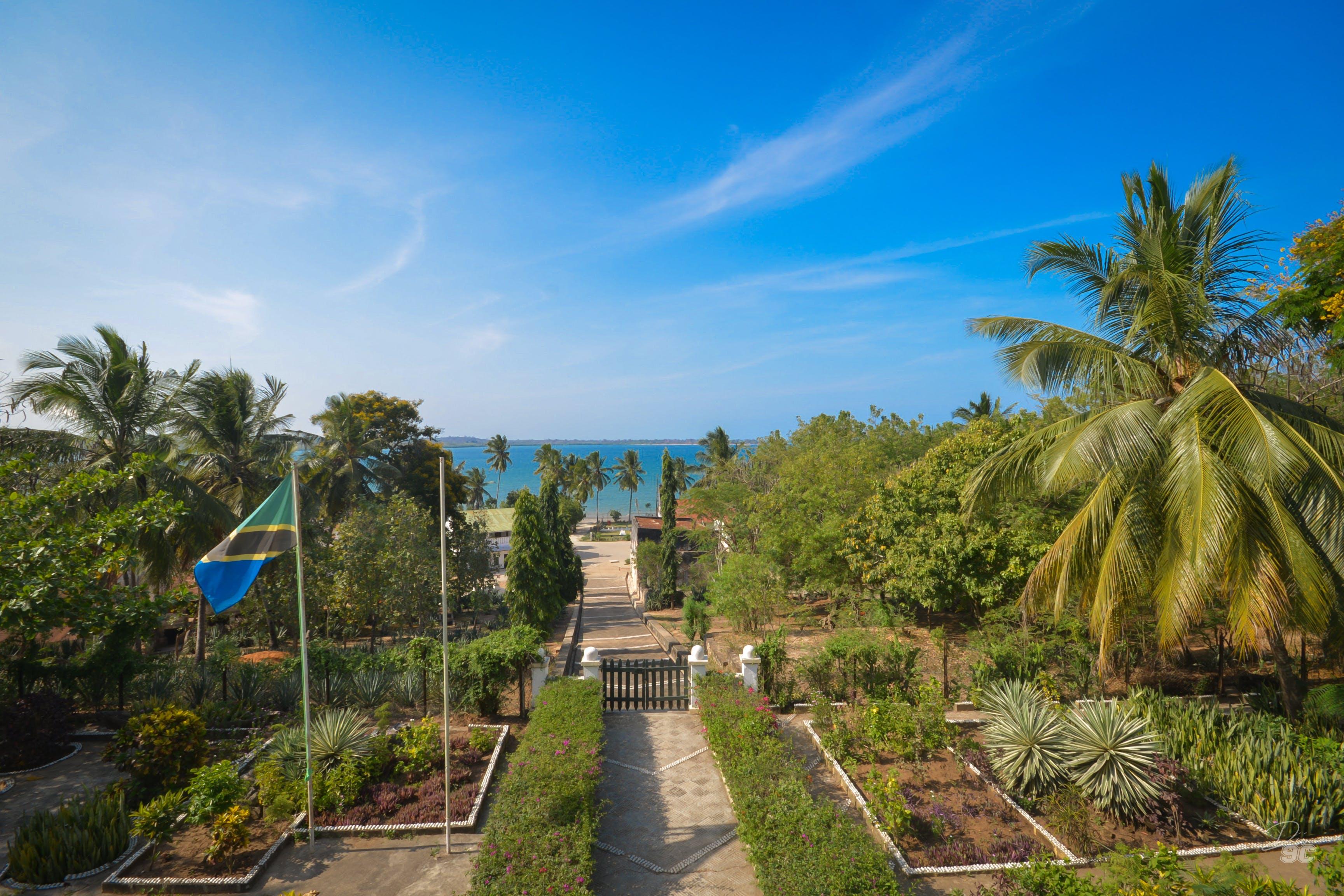 Free stock photo of beautiful Tanzania, dii9c, nature view, ocean