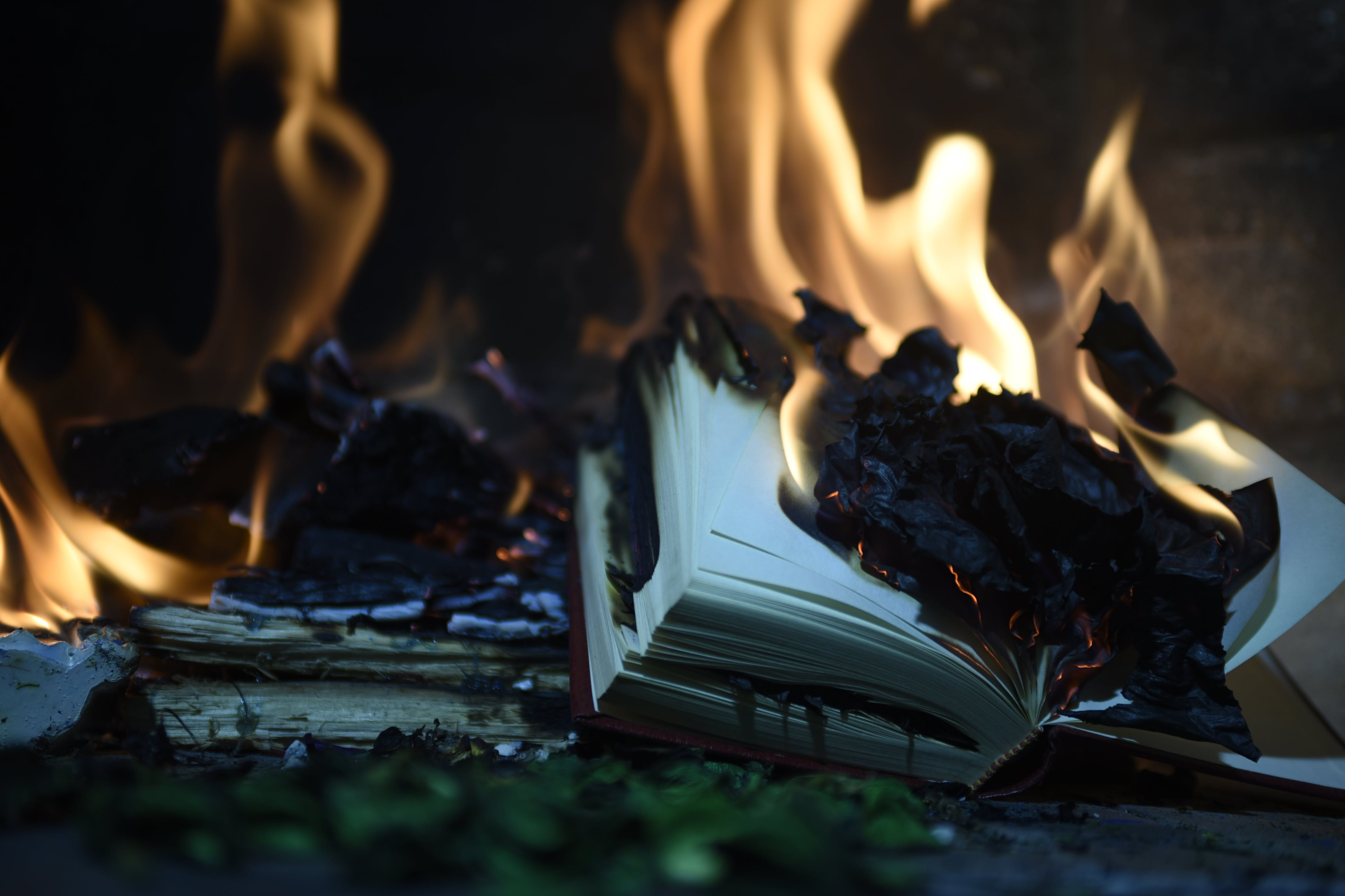 Free stock photo of bonfire, book fire, burning, fire
