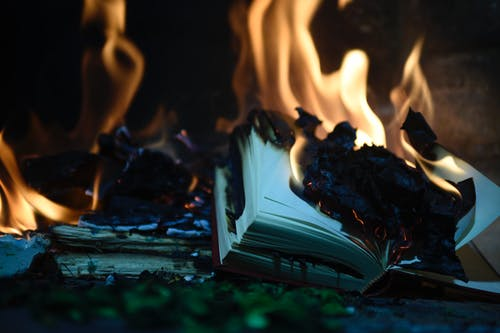 Kostenloses Stock Foto zu brand, feuer, feuer buchen, movidagrafica