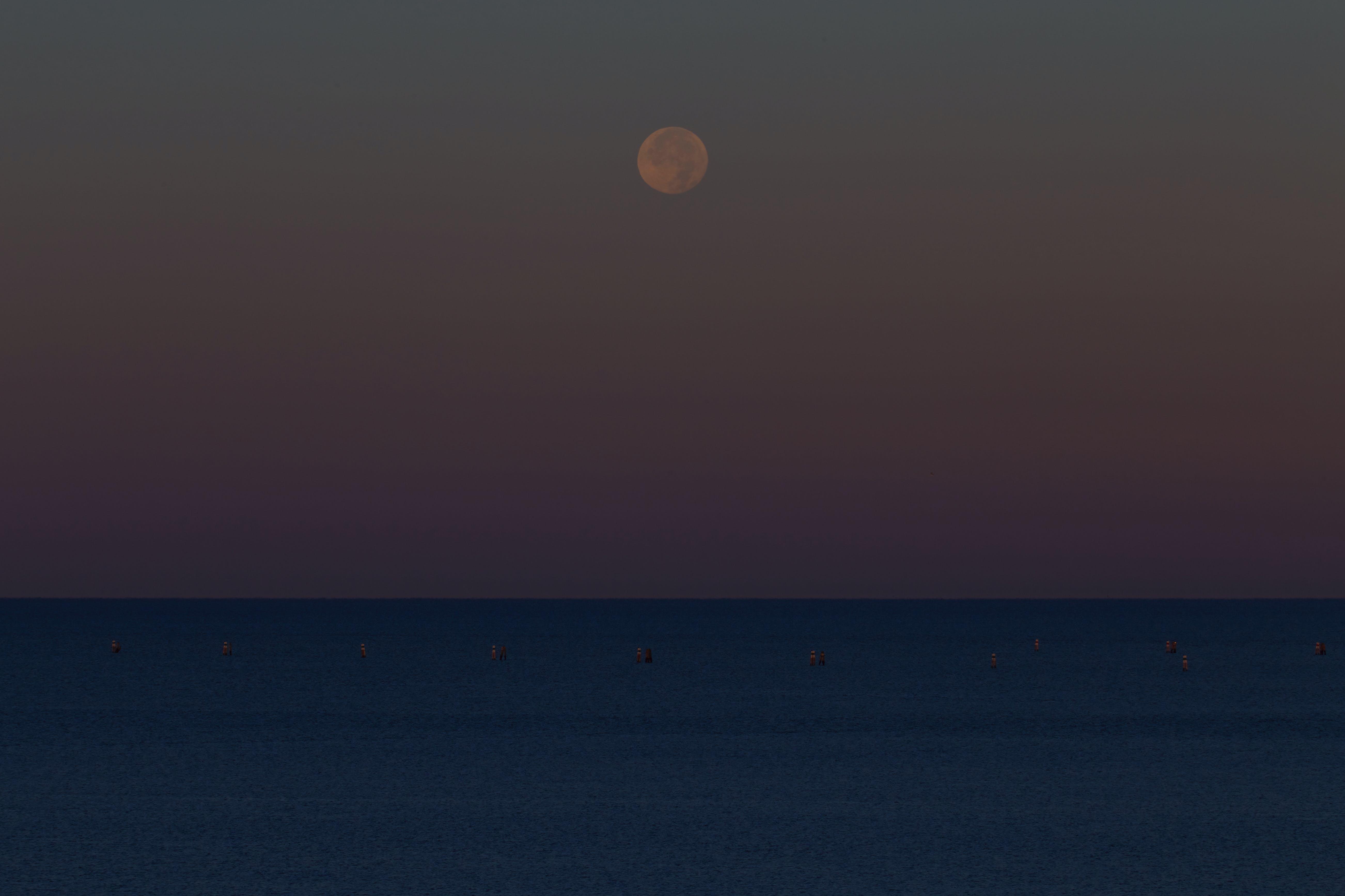 그레도, 기하학적, 달, 달 착륙의 무료 스톡 사진