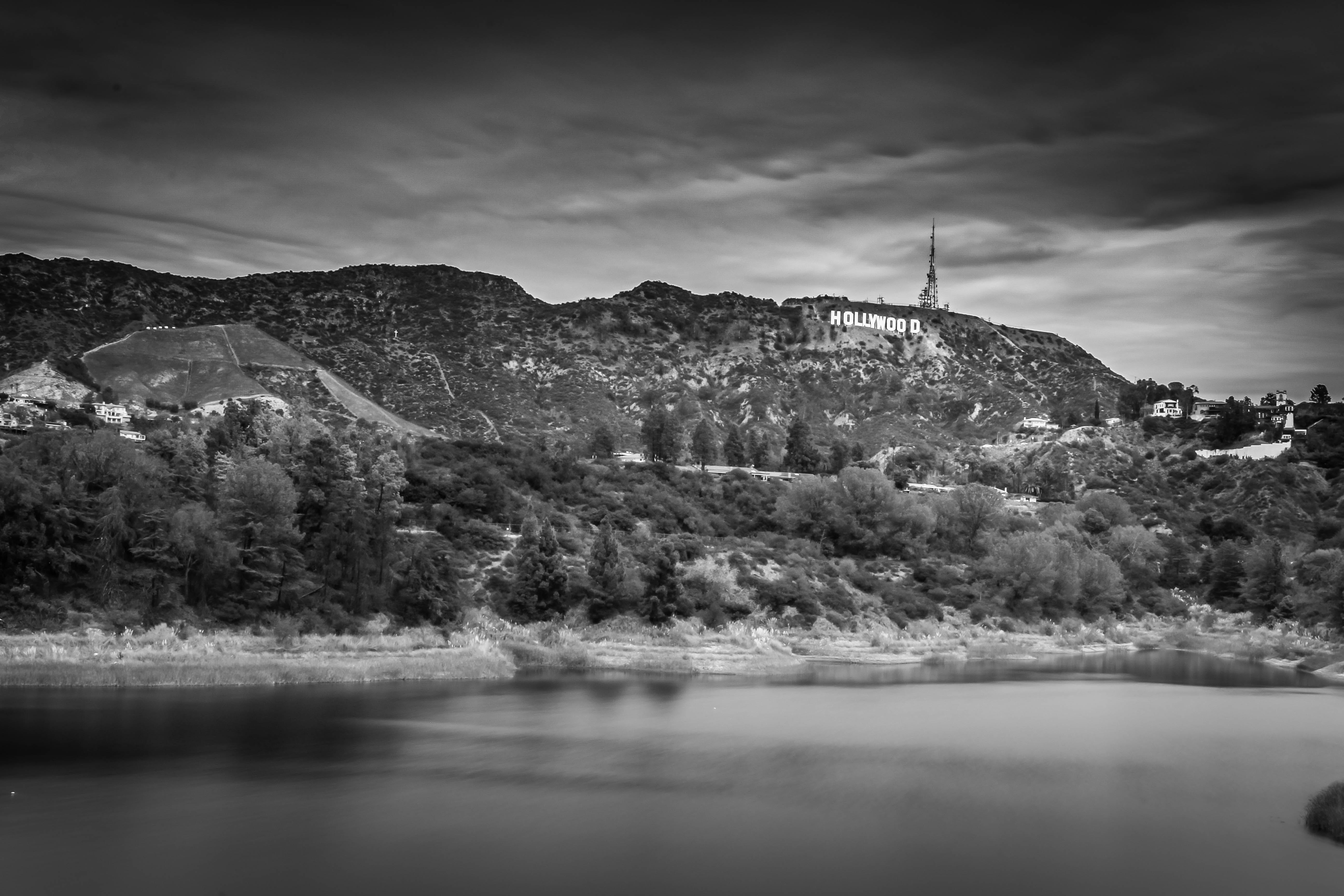 Free stock photo of black and white, hollywood, hollywood reservoir, hollywood sign