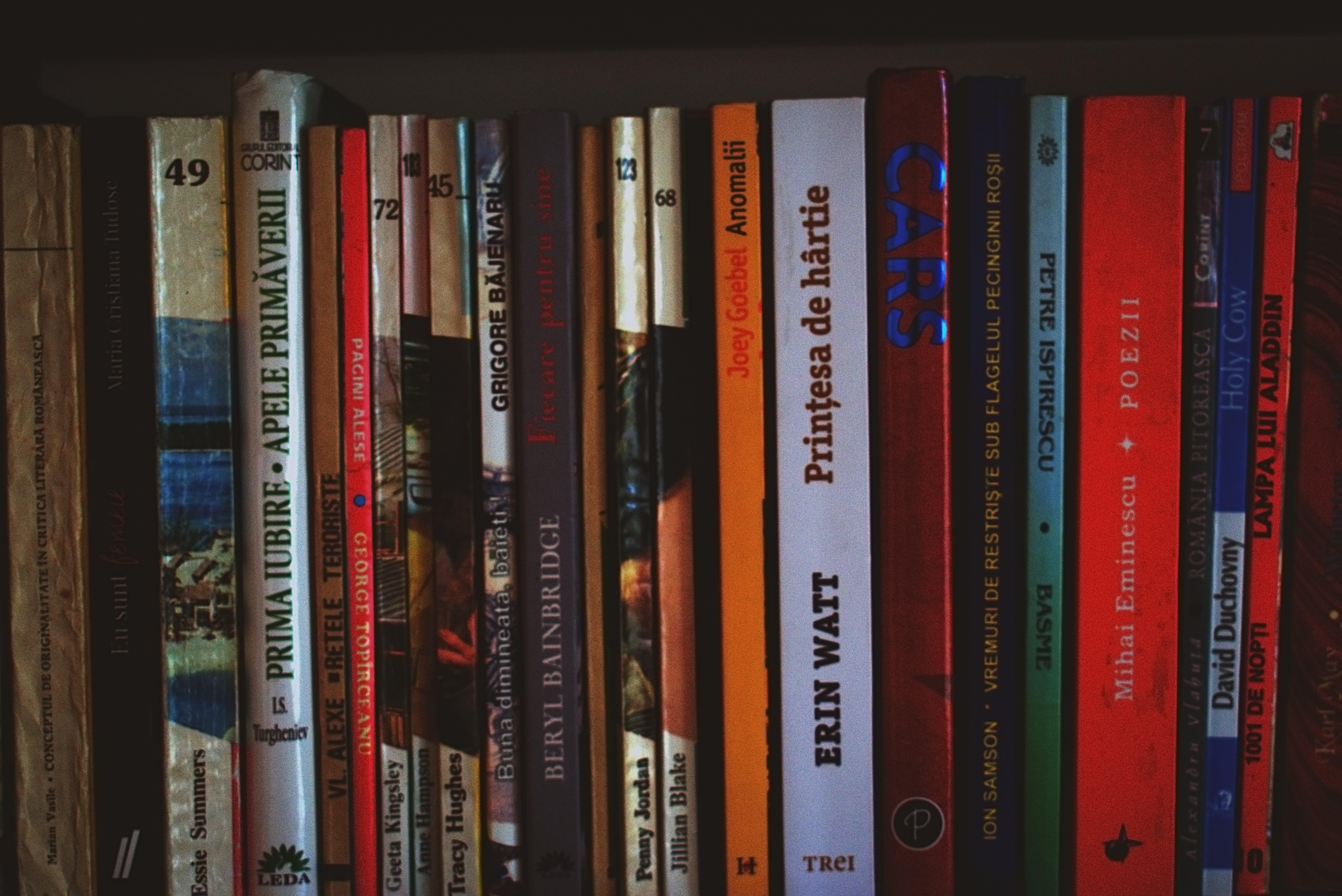 무더기, 서적, 선반, 소설의 무료 스톡 사진