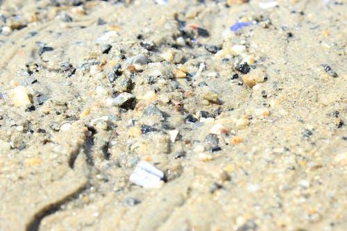 Free stock photo of beach, beach bar, beach front