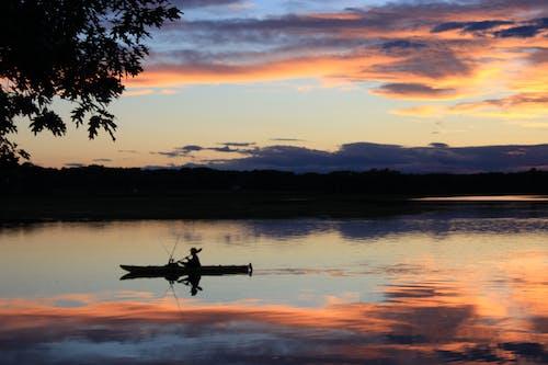 Free stock photo of canoe, canoeing, canoes