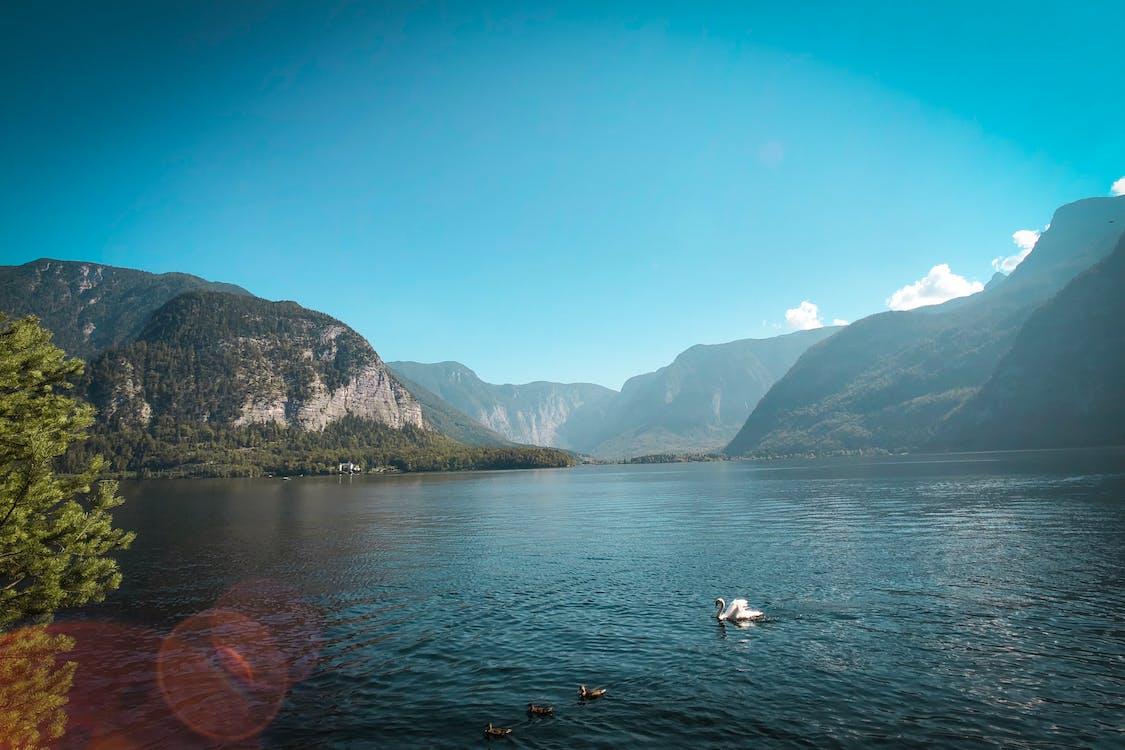 fjord, hora, krajina