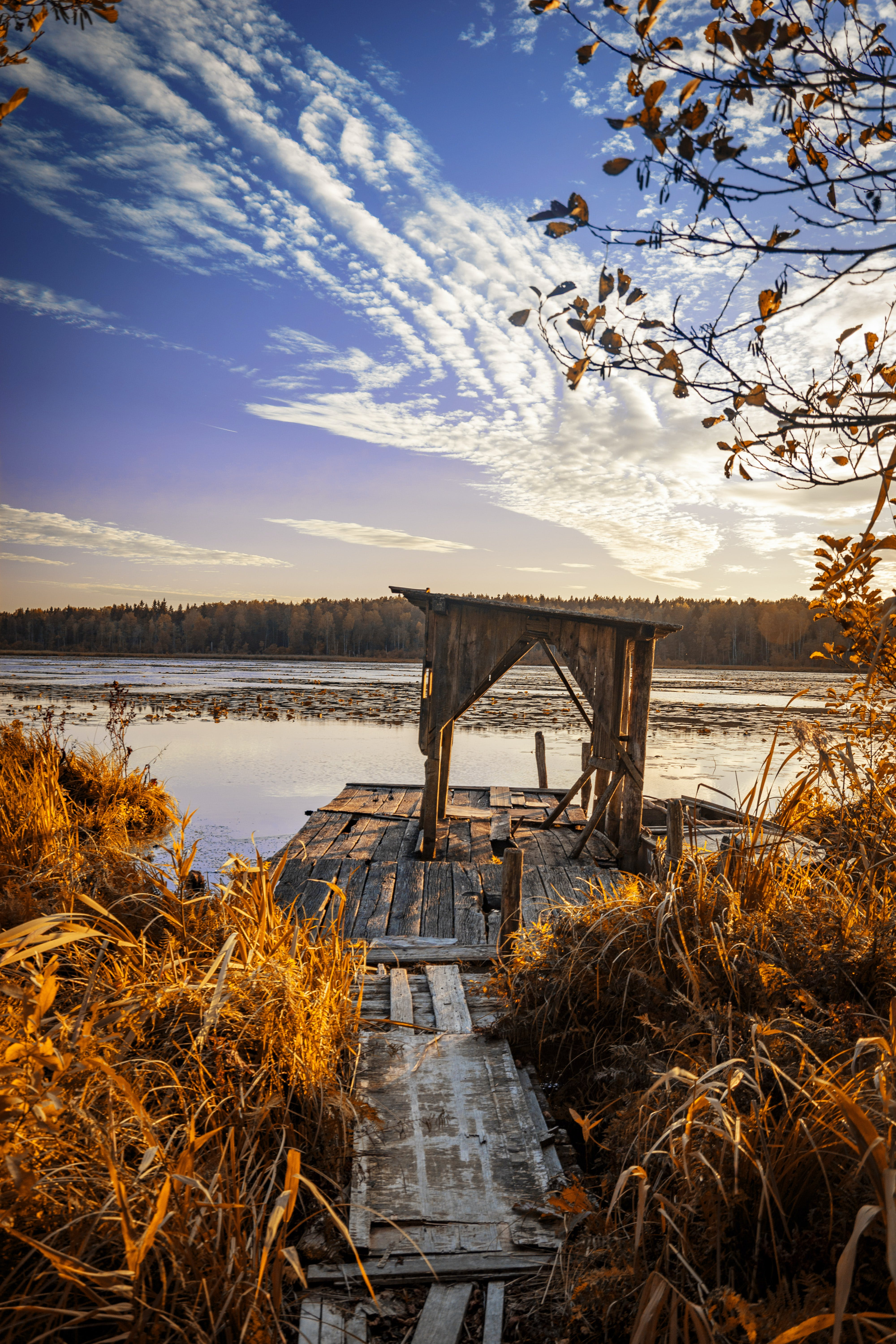 Grass-covered Brown Wooden Dock by a Body of Water during Day
