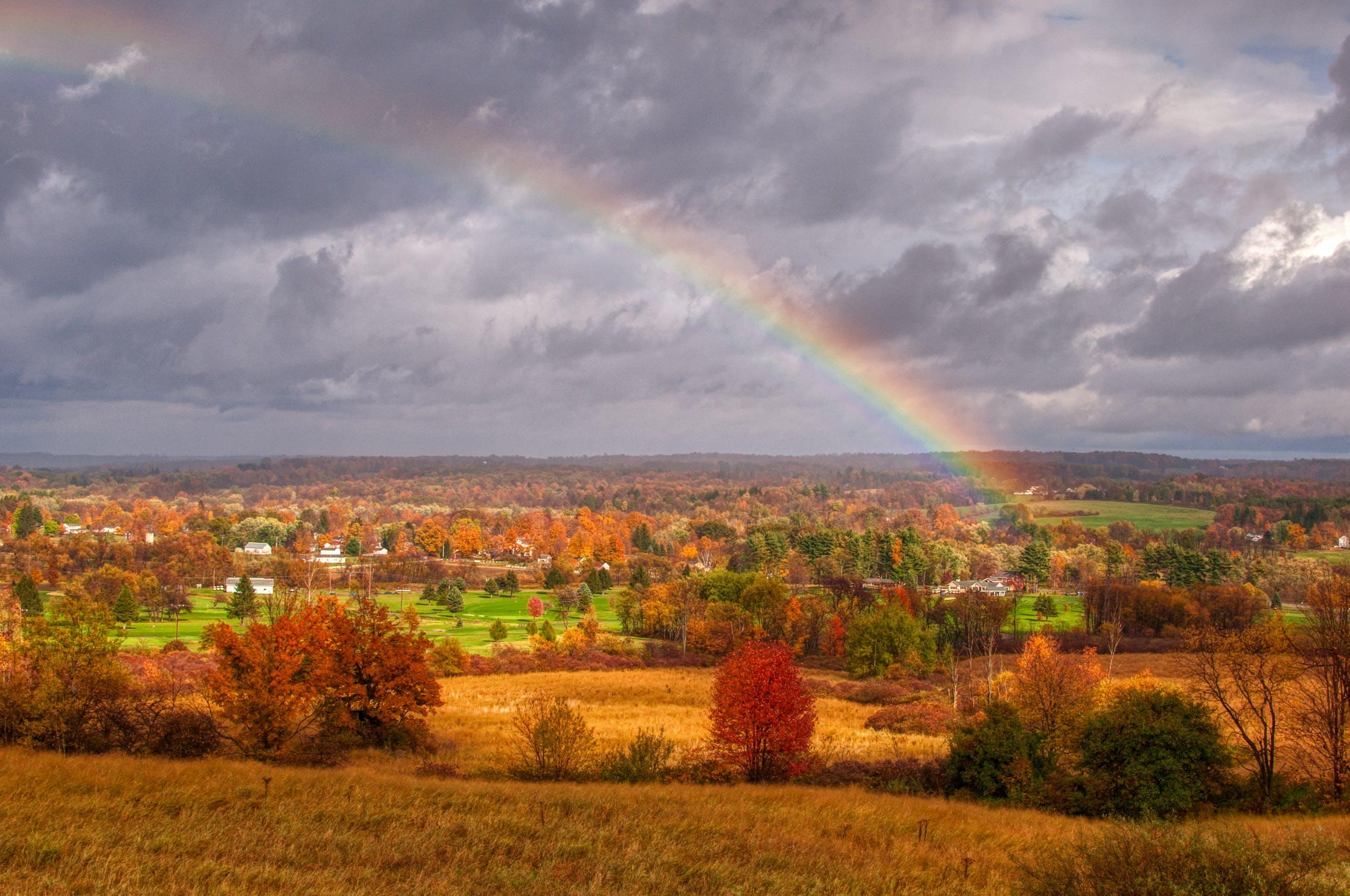 Kostenloses Stock Foto zu herbstlaub, himmel, hoffnung, landschaft